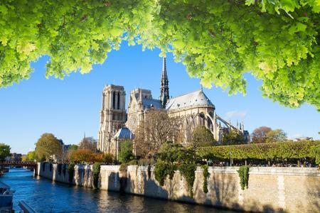notre dame cathedral: Notre Dame cathedral, Paris France Stock Photo