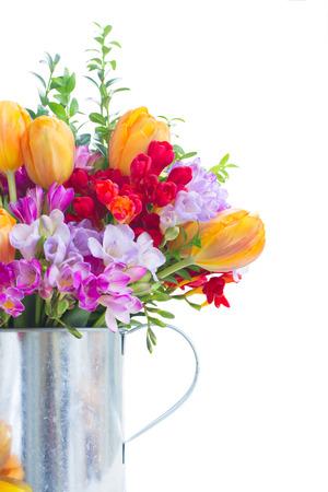 freesia: freesia and tulip flowers