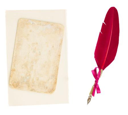 pluma de escribir antigua: pluma de la pluma