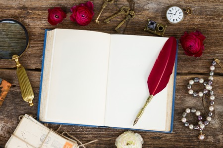 pen and paper: feather pen and open blank book Stock Photo
