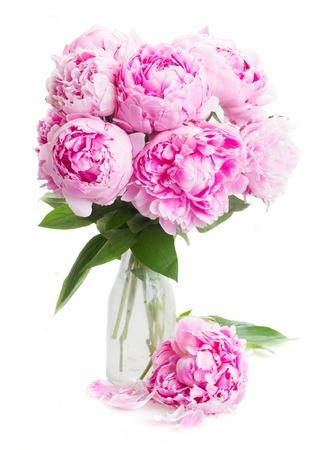 흰색 배경에 고립 된 꽃병에 분홍색 모란 꽃