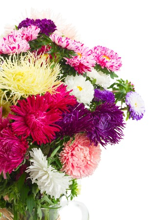flores moradas: colorful  aster flowers bouquet in glass  vase close up isolated on white background