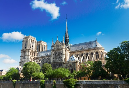 Notre Dame  cathedral  at summer day, Paris, France