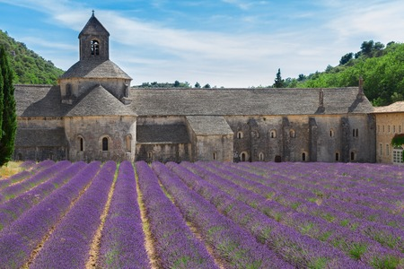 senanque: Abbey Senanque and blooming  Lavender field, France Stock Photo
