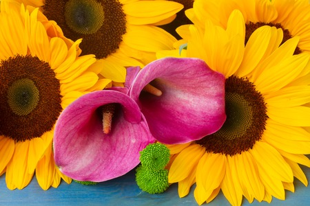 callas: Bunch of   yellow sunflowers, pink  callas and green  mums