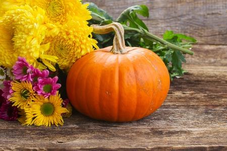 pumpkin patch: one orange pumpkin with mum flowers  on wooden textured  table