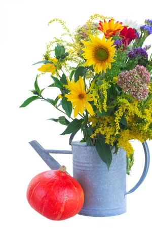 posy: posy of mixed autumn flowers in watering can with pumpkin  isolated on white background Stock Photo