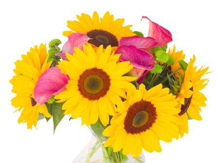 callas: bunch of   sunflowers and callas  close up isolated on white background