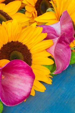 callas: bunch of  fresh  sunflowers callas and mums on blue background