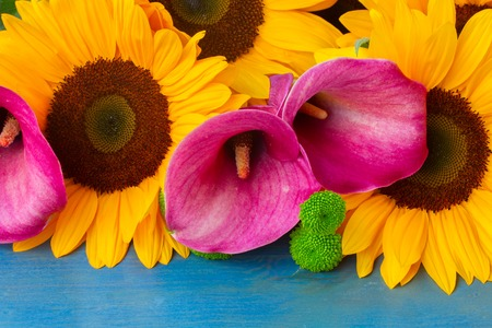 callas: bunch of  fresh  sunflowers callas and mums on blue wooden background Stock Photo