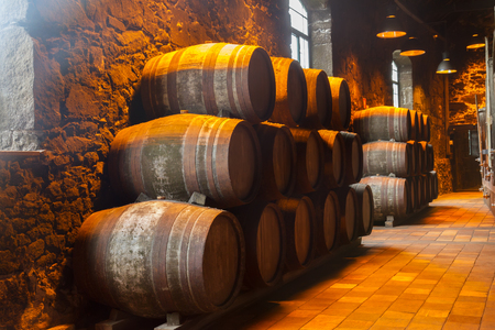oaks: cellar with row of traditional  aged  wooden port  wine barrels