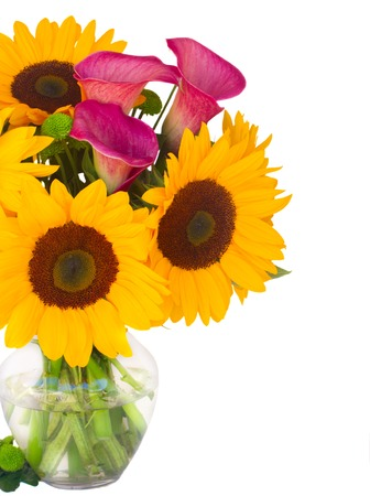 callas: sunflowers, callas and mums in glass vase close up isolated on white background Stock Photo