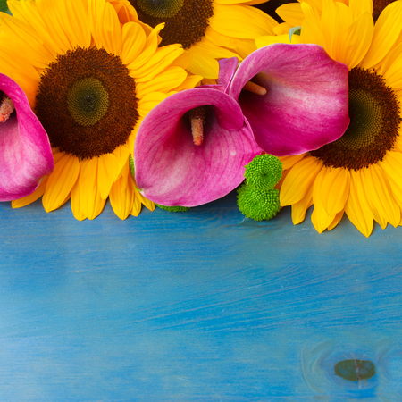 callas: bunch of  fresh  sunflowers callas and mums with copy space on blue wooden background