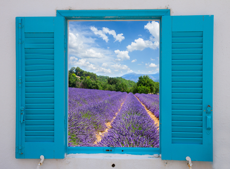 provence window with lavender flowers field, France