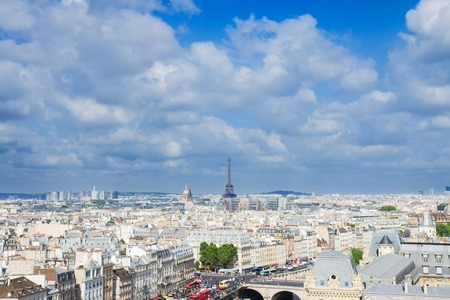 paris skyline: skyline of Paris city roofs with Eiffel Tower from above at summer day, France
