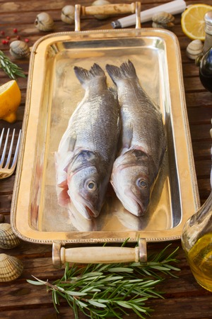 silver tray: Two raw Seabass  fish on silver tray