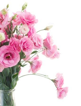 close ups: bunch of fresh pink eustoma flowers close ups  isolated on white background Stock Photo