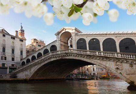 rialto bridge: view of  famouse Rialto bridge at spring, Venice, Italy