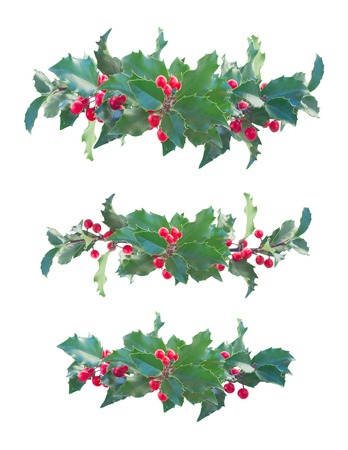 holly berries: Holly branch with  green leaves and red berries set of  borders isolated on white background Stock Photo