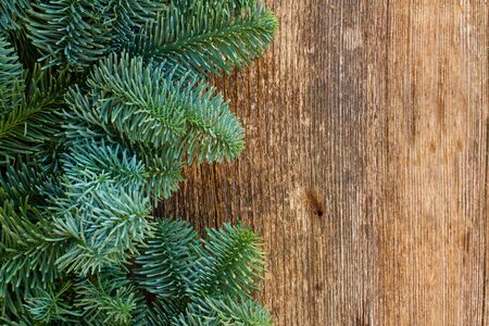 close: christmas fresh evergreen tree branches on wood close up