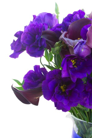 calas blancas: Violet Calla lilly and blue eustoma flowers close up isolated on white background