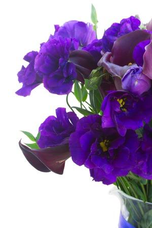 White Callas: Violeta Calla Lilly y flores azules eustoma cerca aisladas sobre fondo blanco Foto de archivo