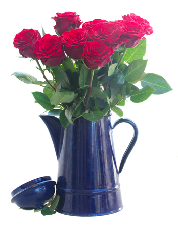 red and white: red roses in blue pot  isolated on white background