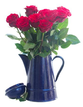 red roses: rosas rojas en la olla azul aislados sobre fondo blanco
