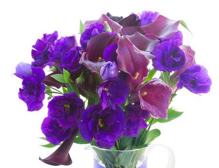 calas blancas: violeta fresca Calla Lilly y flores azules eustoma cerca aisladas sobre fondo blanco Foto de archivo