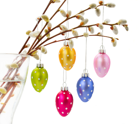 pink pussy: Colorful hanging easter eggs with catkins over white bacjground