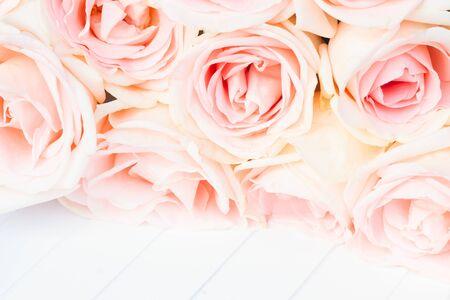 bouquet de fleur: roses roses fraîches ferment la frontière sur fond blanc bois Banque d'images