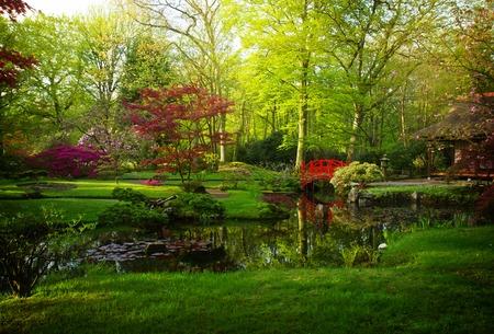 Jardín japonés con el puente rojo en primavera, Den Haag, Holanda, tonificado