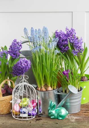 flowerpots: eggs in birdcage and rabbit with flowerpots and flowers Stock Photo