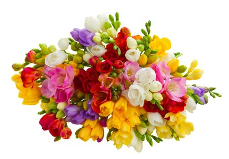 freesia: Bunch of fresh freesia flowers isolated on white background