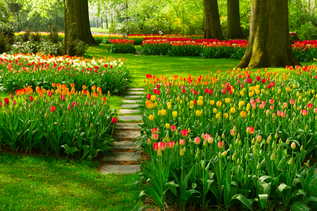 Superbe Stock Photo   Stone Path Step Stones In Fresh Spring Flower Garden
