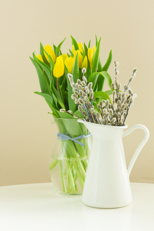 bosom: fresh yellow  tulips and willow catkins  in pot isolated on white background Stock Photo