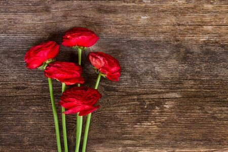 posy: posy of fresh red ranunculus flowers on wooden background Stock Photo