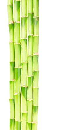 bamboo leaves: green bamboo stems border isolated on white background Stock Photo