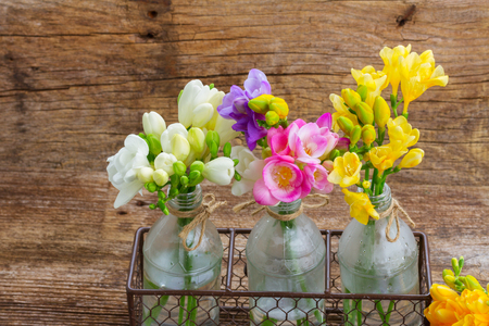Colorful freesia fresh flowers in glass  vases  on wooden table