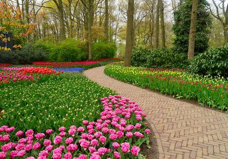 keukenhof: Curve of path in dutch garden Keukenhof, Netherlands
