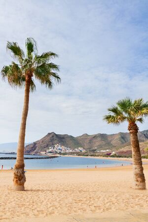 canarias: view of beach Las Teresitas with two palms  at summer day, Tenerife island, Canarias Spain