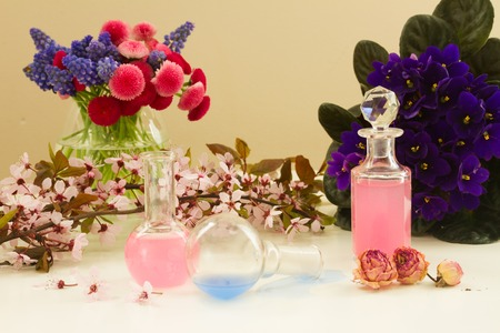 tincture: Dry flowers and glass vials  of tincture or oil, aromatherapy concept