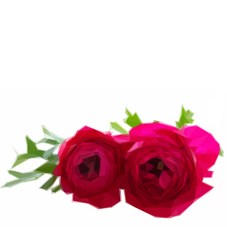 buttercup  decorative: Low poly illustration two pink ranunculus flowers with leaf