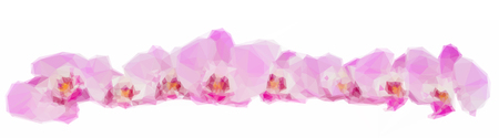 Low poly illustration row of mauve orchid flowers isolated on white background