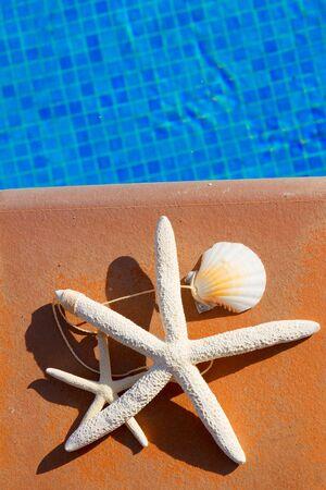 sripes: seashells and starfish near blue water of pool Stock Photo