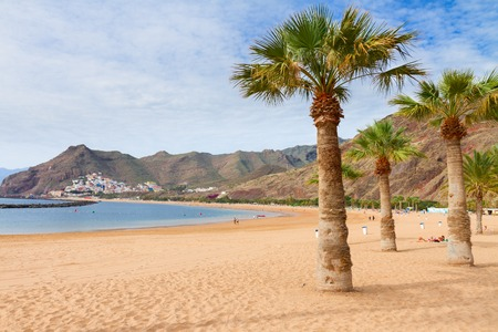 canaries: view of beach Las Teresitas with palms at sunny summer day, Tenerife island, Canaries Spain