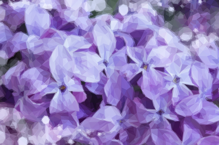 flowers close up: Low poly illustration Fresh beautiful violet lilac flowers close up Illustration
