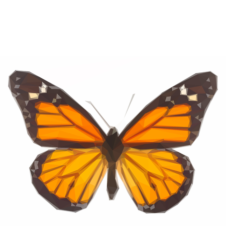 milkweed: Low poly illustration of Orange monarch butterfly