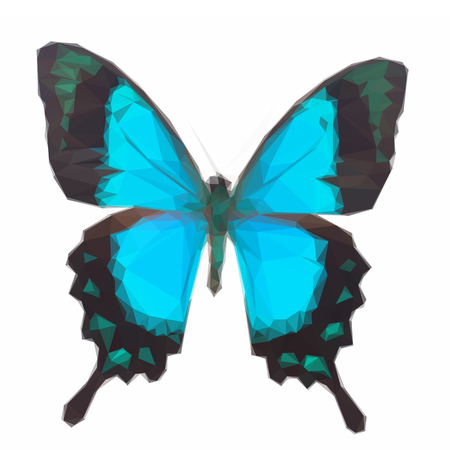 sea green: Low poly illustration of Sea Green Swallowtail butterfly