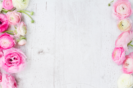 Pink and white ranunculus flowers on white wooden background flat lay scene Archivio Fotografico